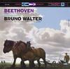 Bruno Walter - Beethoven: Symphony No. 6 in F Major, Op. 68 -  45 RPM Vinyl Record
