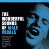 Various Artists - The Wonderful Sounds Of Male Vocals -  200 Gram Vinyl Record