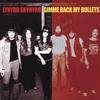 Lynyrd Skynyrd - Gimme Back My Bullets -  45 RPM Vinyl Record