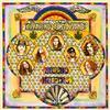 Lynyrd Skynyrd - Second Helping -  200 Gram Vinyl Record