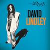David Lindley - El Rayo X -  180 Gram Vinyl Record