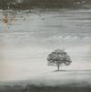 Genesis - Wind & Wuthering -  180 Gram Vinyl Record