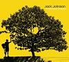 Jack Johnson - In Between Dreams -  Vinyl Record