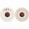 A Perfect Circle - The Doomed/Disillusioned -  10 inch Vinyl Record