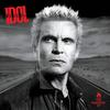 Billy Idol - The Roadside -  Vinyl Record