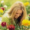 Deana Carter - Did I Shave My Legs For This? -  Vinyl Record