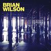 Brian Wilson - No Pier Pressure -  180 Gram Vinyl Record
