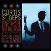 Curtis Stigers - One More For The Road -  Vinyl Record