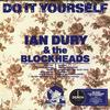 Ian Dury & The Blockheads - Do It Yourself -  Vinyl Record