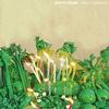 White Denim - Pretty Green -  10 inch Vinyl Record