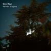 Tzur, Hershkovits, Klampanis, & Blake - Here Be Dragons -  Vinyl Record