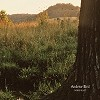 Andrew Bird - Noble Beast -  180 Gram Vinyl Record