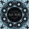 Robert Silverman - Chopin's Last Waltz -  180 Gram Vinyl Record