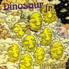 Dinosaur Jr. - I Bet On Sky -  Vinyl Record