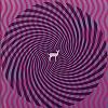 Deerhunter - Cryptograms/Flourescent -  Vinyl Record