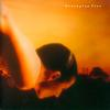 Porcupine Tree - On The Sunday Of Life -  Vinyl Record