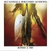 Sigi Schwab - Rondo a Tre -  180 Gram Vinyl Record