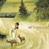 Soy Un Caballo - Les Heures de Raison -  Vinyl Record