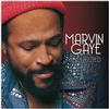 Marvin Gaye - Collected -  180 Gram Vinyl Record