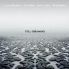 Joshua Redman - Still Dreaming -  Vinyl Record