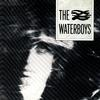The Waterboys - The Waterboys -  180 Gram Vinyl Record