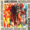 James Brown - Motherlode -  Vinyl Record