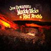 Joe Bonamassa - Muddy Wolf At Red Rocks -  180 Gram Vinyl Record