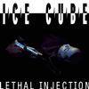 Ice Cube - Lethal Injection -  Vinyl Record