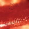 The Cure - Kiss Me, Kiss Me, Kiss Me -  180 Gram Vinyl Record
