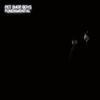 Pet Shop Boys - Fundamental -  180 Gram Vinyl Record