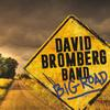David Bromberg Band - Big Road -  140 / 150 Gram Vinyl Record