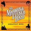 The Marshall Tucker Band - Greatest Hits -  140 / 150 Gram Vinyl Record
