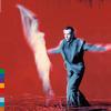Peter Gabriel - Us -  180 Gram Vinyl Record