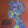 The String Cheese Incident - Song In My Head -  180 Gram Vinyl Record