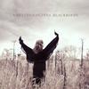 Gretchen Peters - Blackbirds -  Vinyl Record