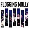 Flogging Molly - Live At The Greek Theatre -  Vinyl Record & DVD
