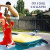 Oxford Collapse - Remember The Night Parties -  Vinyl Record