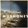 Mudhoney - Vanishing Point -  Vinyl Record