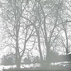 Envy - Compiled Fragments 1997-2003 -  Vinyl Record