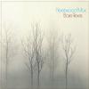 Fleetwood Mac - Bare Trees -  Vinyl Record