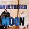Built To Spill - Untethered Moon -  Vinyl Record & CD