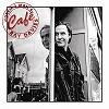 Ray Davies - Working Man's Cafe -  180 Gram Vinyl Record