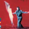 Peter Gabriel - Us -  Vinyl LP with Damaged Cover