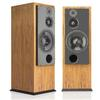 ATC - SCM100 12 Inch Passive Tower Speaker (Pair) -  Speakers