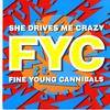 Fine Young Cannibals  - She Drives Me Crazy -  Preowned Vinyl Record