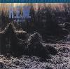 R.E.M. - Murmur -  Preowned Vinyl Record