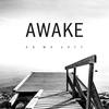 AWAKE - As We Fall -  FLAC 96kHz/24bit Download