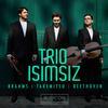 Trio Isimsiz - Brahms, Takemitsu & Beethoven -  FLAC 96kHz/24bit Download