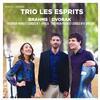 Trio Les Esprits - Brahms & Dvorak: Piano Trios -  FLAC 96kHz/24bit Download