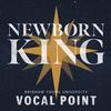 BYU Vocal Point - Newborn King -  FLAC 48kHz/24Bit Download